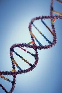 Mutations in DNA cause cancer